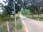 Road to Baba Brala