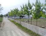 village-front-view